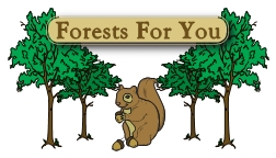 Forests For You